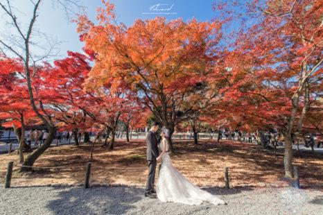 婚攝Edward,海外婚紗,京都婚紗,海外自助婚紗,嵐山婚紗,楓葉婚紗,日本自助婚紗,新秘Agness
